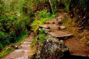 Beautiful steps made by the Quechua people for the Incas to reach Machu Picchu.