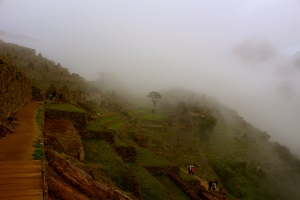 Finally up at the top and through the gates Machu Picchu is still clouded by the morning mist.
